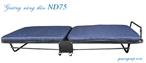 Giường xếp nâng đầu ND75